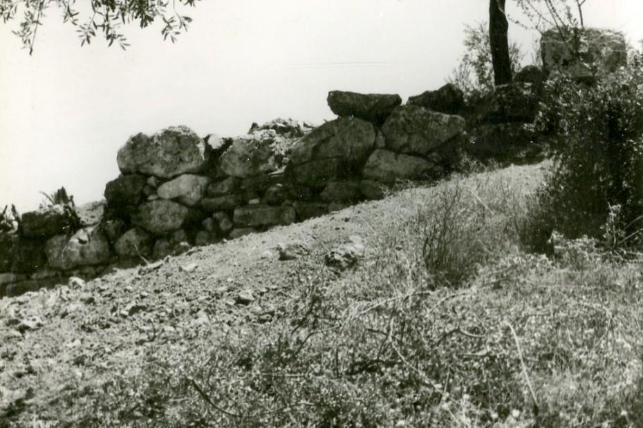 Ιερό Απόλλωνος: Χώρος